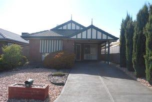 9 Bluebush Court, Craigmore, SA 5114