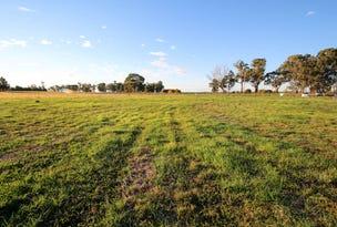 Lot 91 Tocumwal Mulwala Road, Barooga, NSW 3644