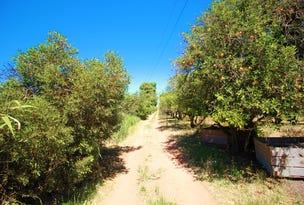 252 Kibby Road, Loxton, SA 5333