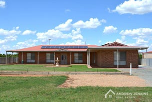 121 Cottons Road, Cobram, Vic 3644