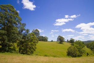 407 Squires Road, Wootton, NSW 2423