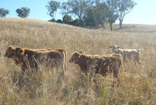 Woodburn 21 Wisemans Arm Rd,Garthowen/Attunga, Tamworth, NSW 2340