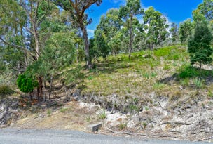 82 Lagoon Road, White Beach, Tas 7184