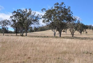 163 Milford Hills Lane, Turanville, Scone, NSW 2337