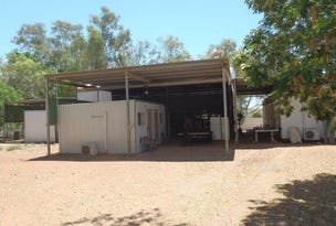 17 Skull Springs Road, Nullagine, WA 6758
