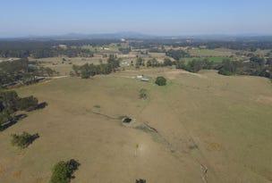 295 Wirrimbi Road, Newee Creek, NSW 2447