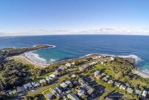 20 Harrington Crescent, Bawley Point, NSW 2539