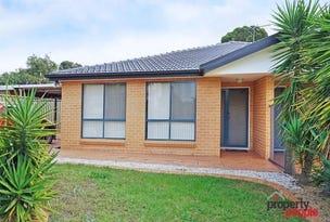 19 Treelands Avenue, Ingleburn, NSW 2565