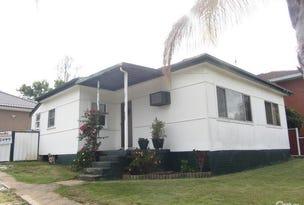 44 Judith Avenue, Cabramatta, NSW 2166