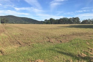 Proposed Lot 13 Cowper Street, Stroud, NSW 2425