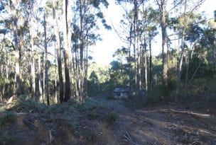 184 Christmas Hill Rd, Elizabeth Town, Tas 7304