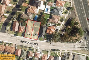 12-14 Roseland Avenue, Roselands, NSW 2196