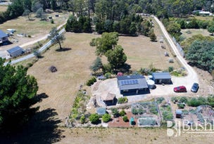 4359 West Tamar Highway, Beauty Point, Tas 7270