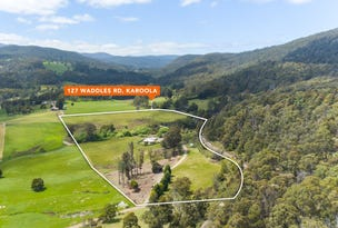 127 Waddles Road, Karoola, Tas 7267