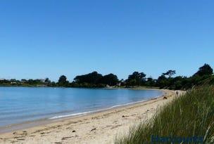 1 Lagoon Beach, Low Head, Tas 7253