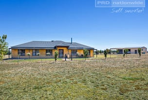 111 Butterbush Road, Gregadoo, NSW 2650
