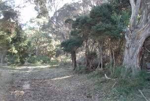 Lot 1 Palana Road, Lughrata, Tas 7255