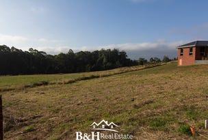 9 Oasis Drive, Shorewell Park, Tas 7320