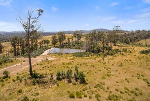 Lot 15 Drovers Rise Sugar Loaf Road, Carlton River, Tas 7173