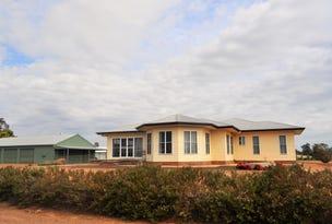 24  Riverside Drive, Narrabri, NSW 2390