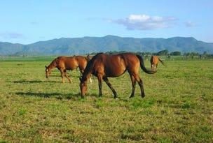 123 Tinaroo Creek Road, Mareeba, Qld 4880
