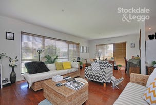 13 Chestnut Avenue, Morwell, Vic 3840