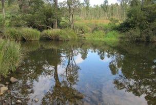 L163 Paddys Flat Rd, Tabulam, NSW 2469