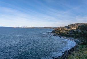 Lot 1, 11901A Tasman Highway, Rocky Hills, Tas 7190