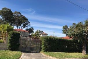 100 Cumberland Street, Cabramatta, NSW 2166