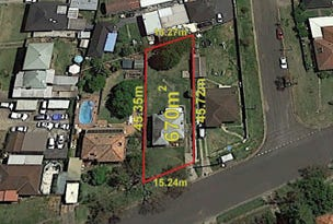 42 Miller Road, Chester Hill, NSW 2162