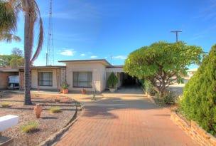 66 Zante Road, Berri, SA 5343