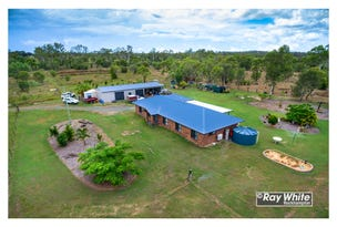 49 Anderson Road, Alton Downs, Qld 4702