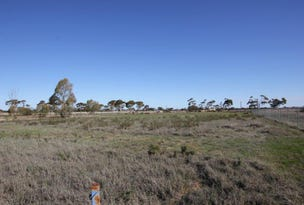 Lot 15 Insignia Way, Merredin, WA 6415