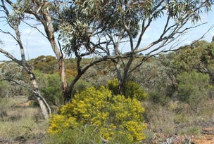 Lot 328, Sec. 328 McKay Road, Glossop, SA 5344