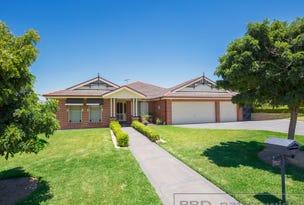 13 Ribbonwood Close, Largs, NSW 2320