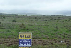 Lot 120, 120 FREEBAIRN ROAD, Quorn, SA 5433