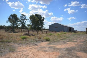 6783 Billiatt Road, Lameroo, SA 5302