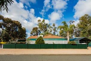 16 Murray Price Drive, Renmark, SA 5341