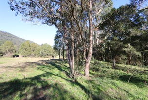 Lot 1 288 Martins Creek Road, Paterson, NSW 2421