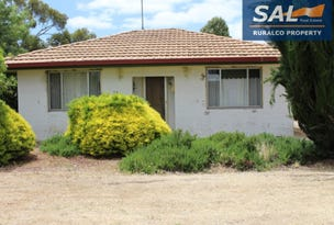 16 Dinning Terrace, Bordertown, SA 5268