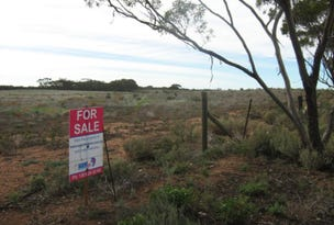Sect. 199 (Hundred of Bagot) Seven Cross Road, Cambrai, SA 5353