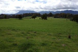 830 Cradle Mountain Road, Erriba, Tas 7310