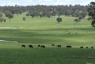 Brooklyn Park Oxley Highway, Walcha, NSW 2354