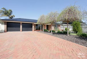 9 Warner Court, Sandy Creek, SA 5350
