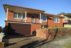 119 Garden Grove Parade, Adamstown Heights, NSW 2289