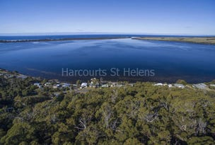 2127208 North Ansons Bay Road, Ansons Bay, Tas 7264