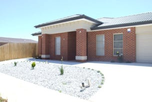 21 Equine Cct, Melton South, Vic 3338