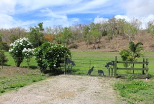Lot 42 Hancock Road, Alligator Creek, Qld 4816