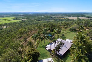 124 Probert Road, Bambaroo, Qld 4850