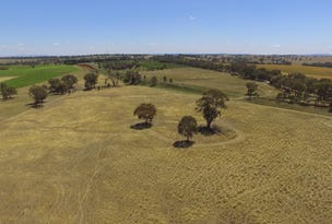 Lot 3 Kingsvale Road, Young, NSW 2594
